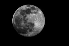 Waning Moon, Nov, 2009